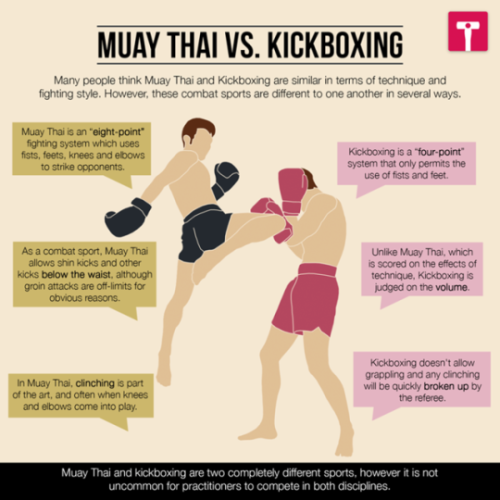 Muay Thai Vs Kickboxing Which Style Is More Effective In A Fight Muay Thai Kickboxing Boxing Training