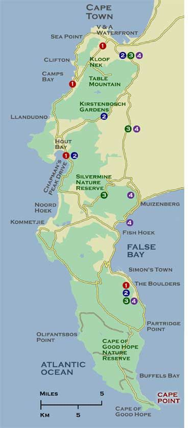 A map of Cape Point, Cape Town, South Africa. Where 2 oceans meet ...
