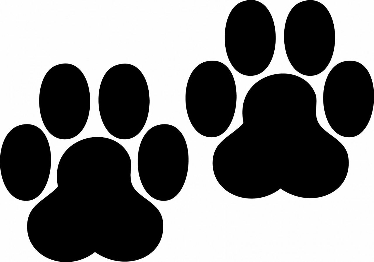 Bobcat paw print clipartsco with images paw print