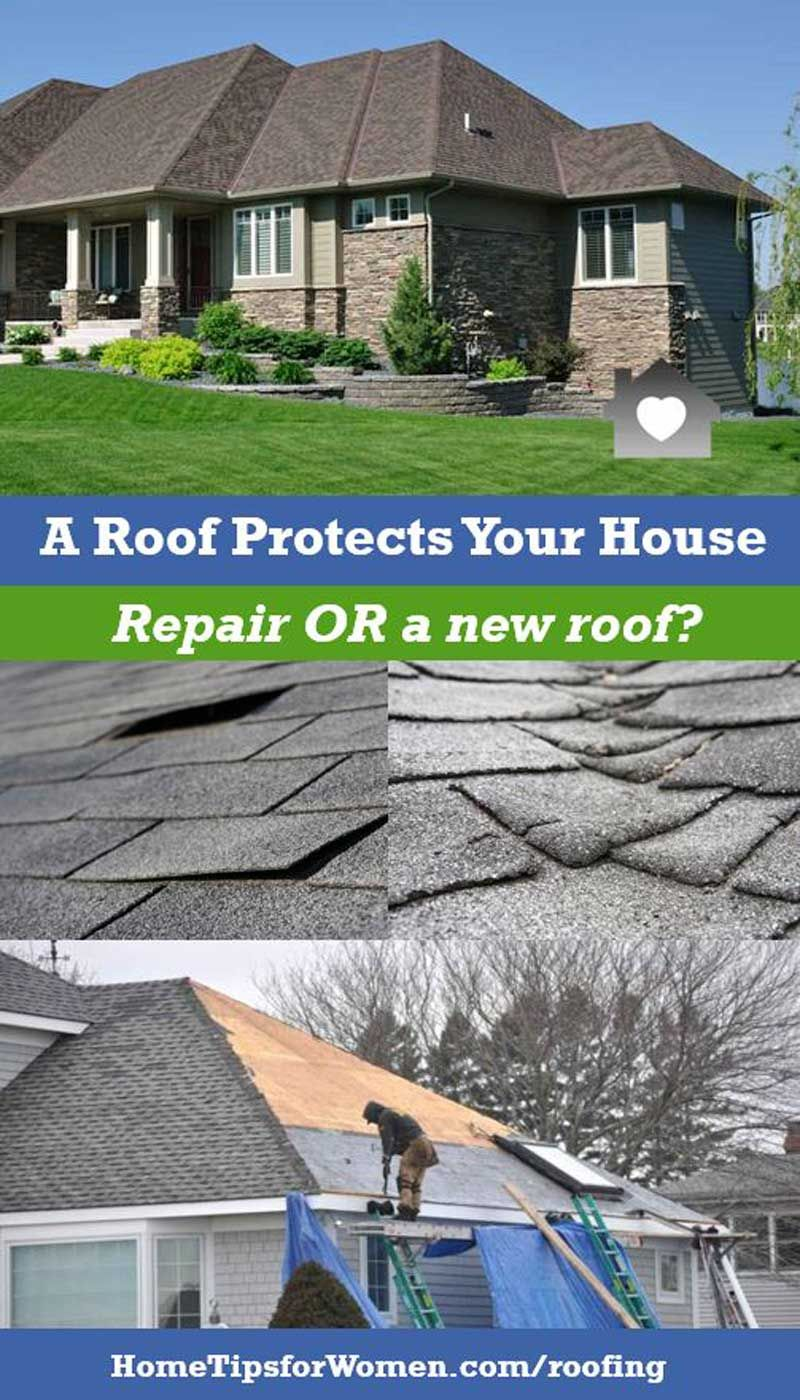 Roof Repairs Vs New Roof A Big Decision Home Repair Roofing Options Roofing Contractors
