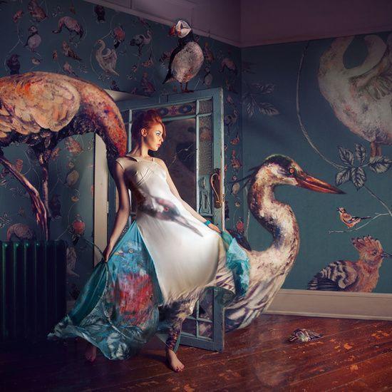 Miss Aniela fotografia surreal fashion modelos animais