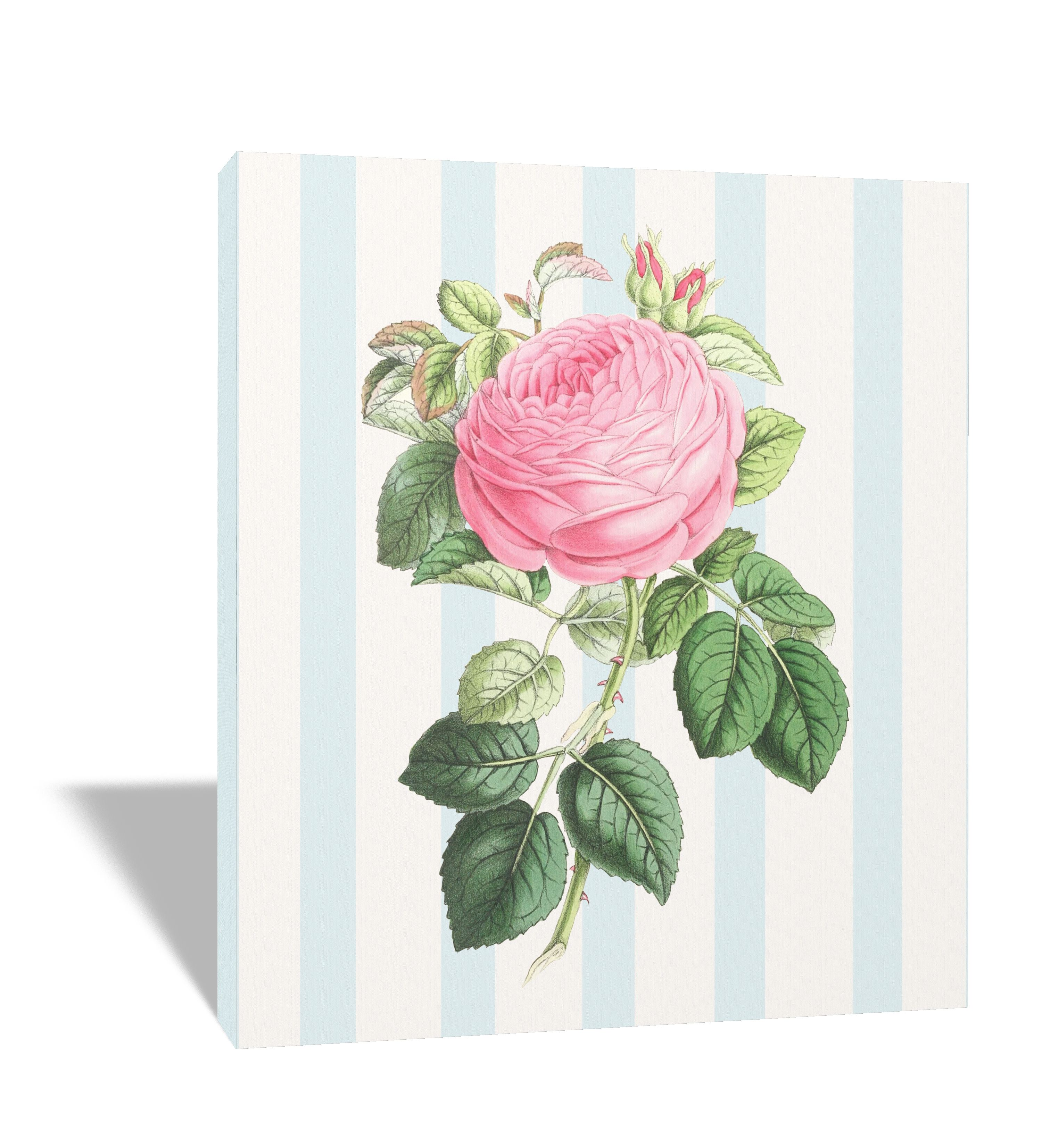 Shabby Chic canvas frame available on amazon