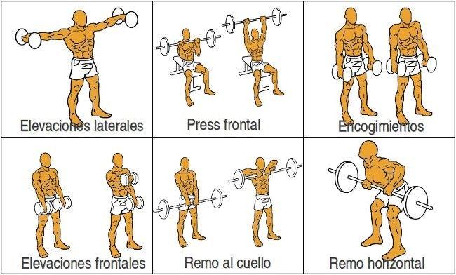 Ejercicios hombros fitness rutinas pinterest gym for Posters para gimnasios