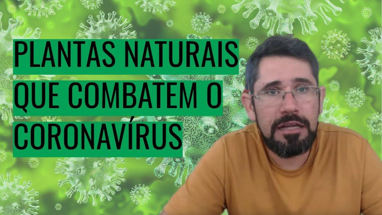 Pin de Eliane Couto em doenças 4 em 2020 Plantas, Natural