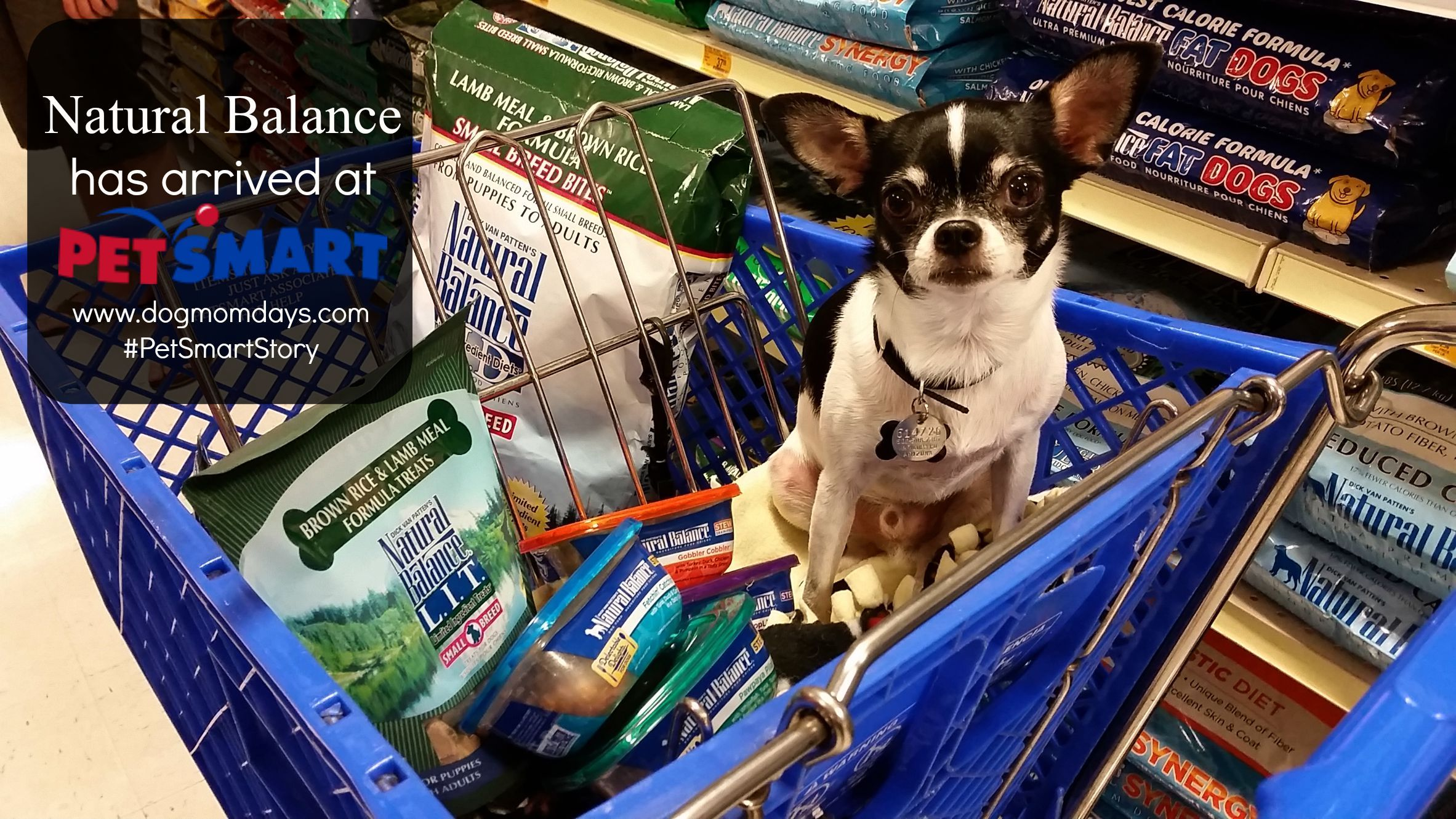 It S Reason To Celebrate Natural Balance Has Arrived At Petsmart