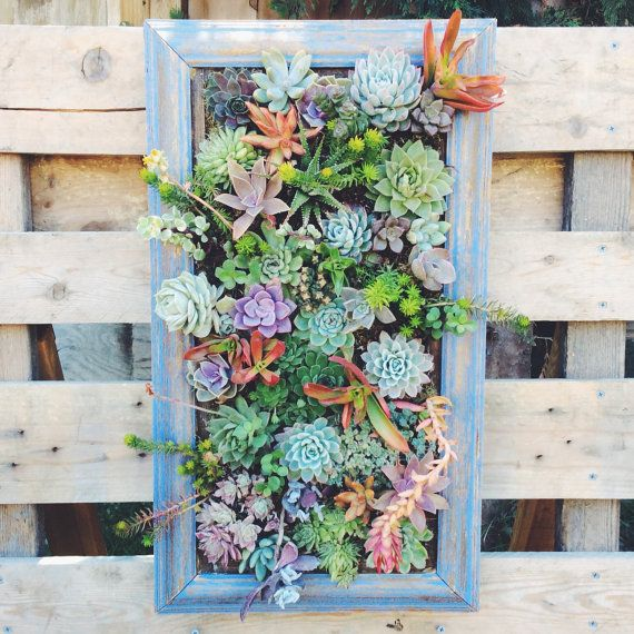 Your Place To Buy And Sell All Things Handmade Hanging Planter Boxes Hanging Succulents Succulents