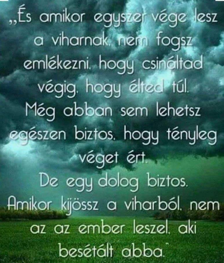 idézetek napi bölcsességek Mai napi bölcsességek   okos hülyéskedik,hülye okoskodik