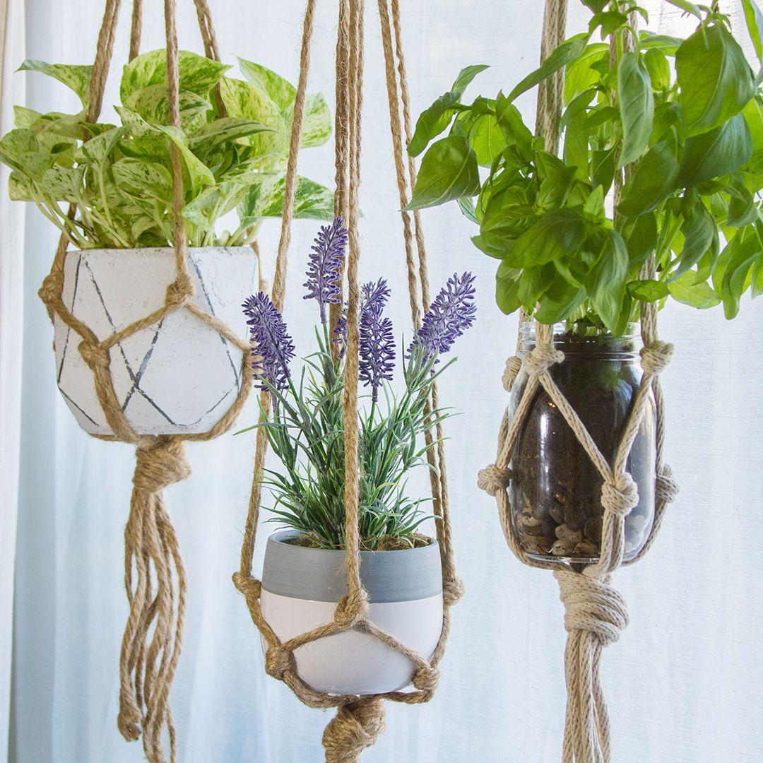 Sencillas plantas colgantes para conseguir estar zen en casa