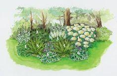 Schattige Plätze im Garten: 3 Ideen zum Nachpflanzen #blumenbeetanlegen