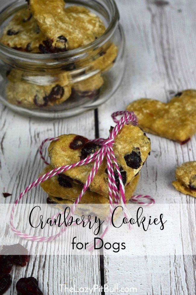 Heart Shaped Cranberry Cookies For Dogs Recipe Dog Cookies