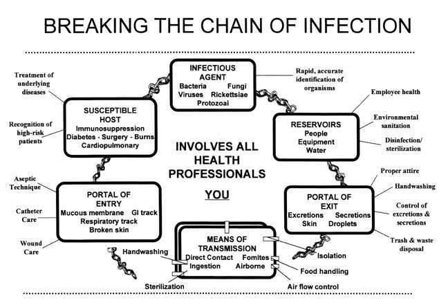 chains of infections essay Lesson 1: introduction to epidemiology section 10: chain of infection as described above, the traditional epidemiologic triad model holds that infectious diseases result from the interaction of agent, host, and environment.
