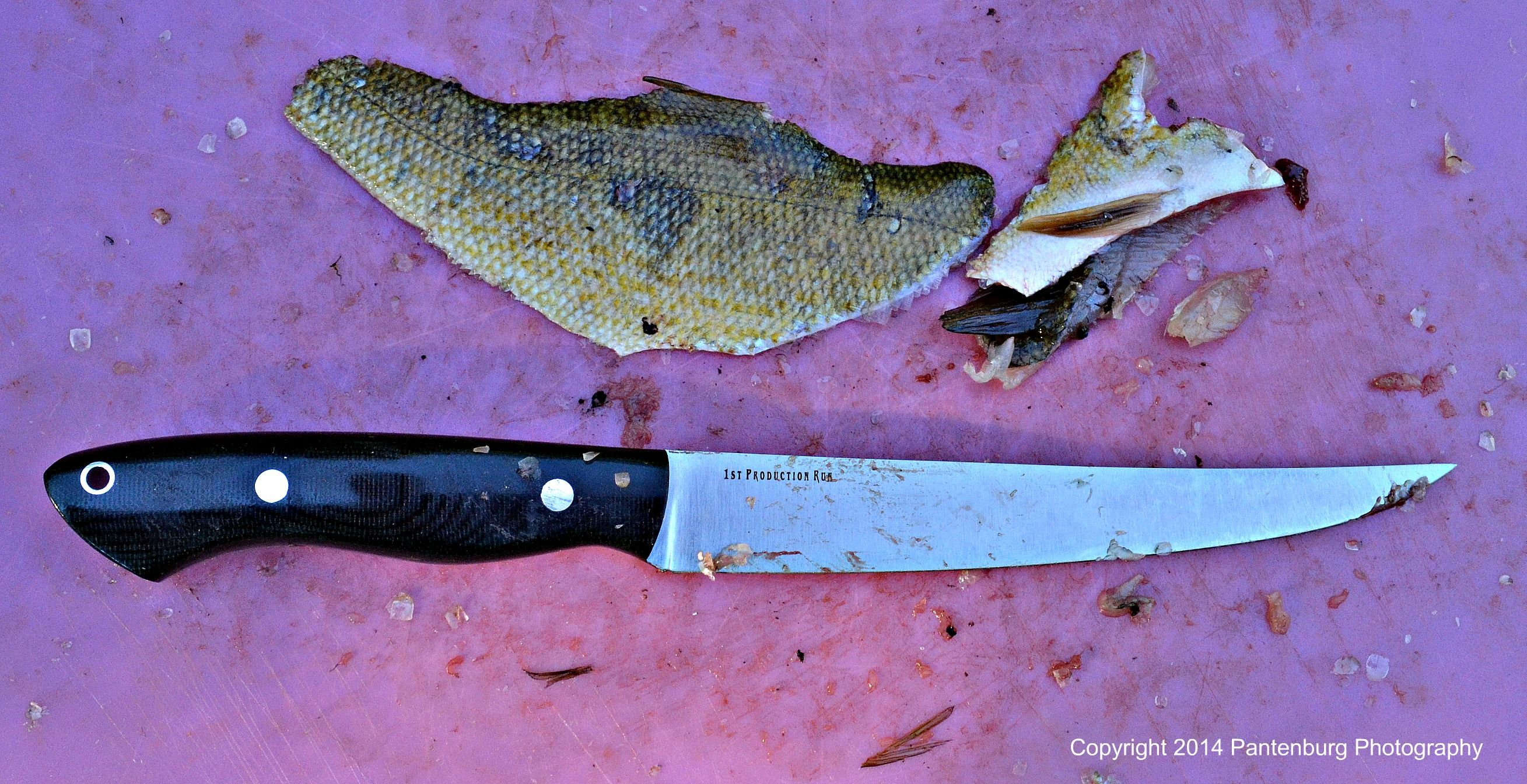 Is this the best fillet knife? We review the Bark River
