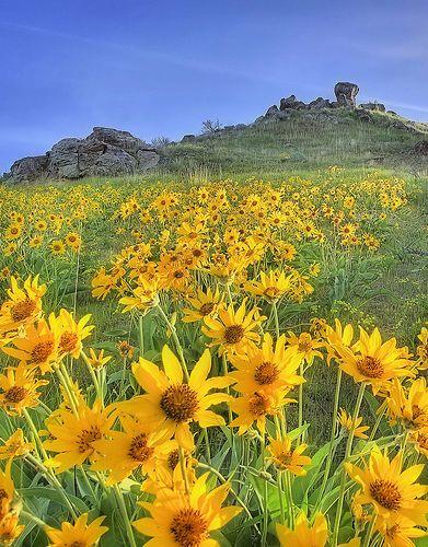 Boise, Idaho Foothills