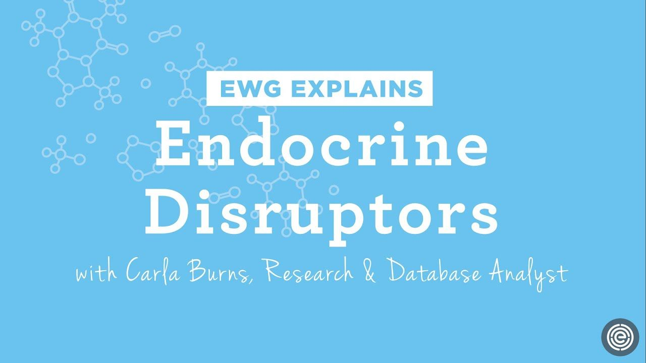 What are endocrine disruptors youtube in 2020