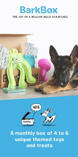 Barkbox Is A Monthly Themed Box Of Fun Toys And All Natural Treats