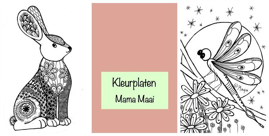 Kleurplaten Voor Volwassenen Konijn.Kleurplaat Konijn En Libelle Dutch Mama Bloggers On
