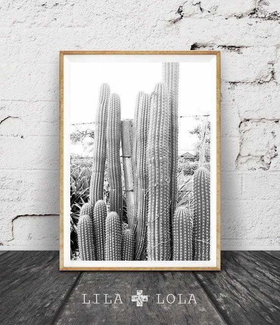 Cactus Print Black and White Photography Cactus Photo Wall Art