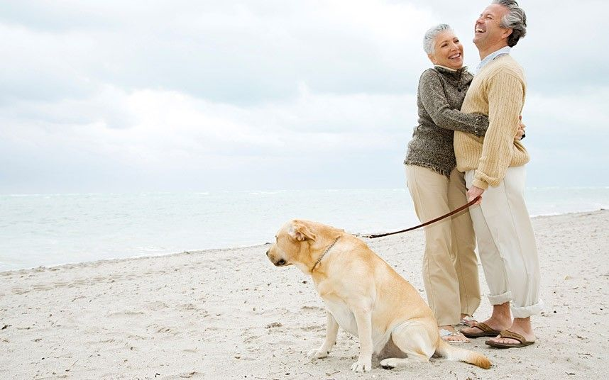 Human-Animal Bond: Study says #dogs should be loaned to the elderly because they keep people a decade younger. #PetHealth #ADOPTdontShop