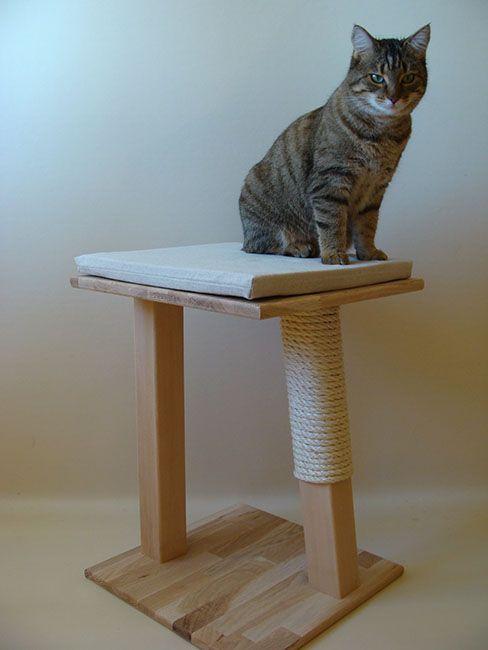 arbre chat en bois massif mod le 39 oxalis 39 chat perch mobilier pour. Black Bedroom Furniture Sets. Home Design Ideas