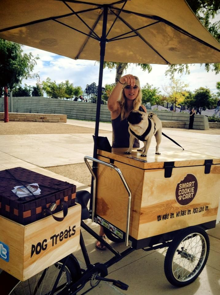 Pugs In The Park For Colorado Pug Rescue Treattrike Coloradodog