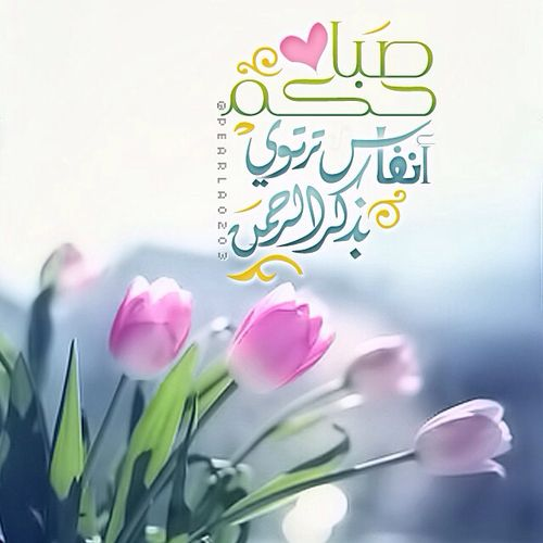 صور صباح الخير دينية صور و خلفيات الوليد Beautiful Morning Messages Good Night Messages Morning Greeting