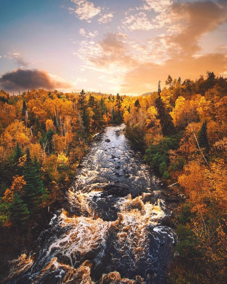 Nature Beautiful Scenery A Golden River In Autumn Silver Bay Minnesota Upnorth Livethenorth Theno In 2020 Minnesota Scenery Minnesota Nature Nature Photography