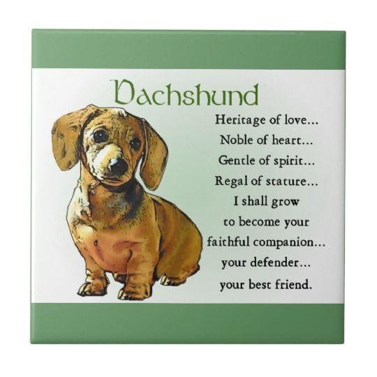 Dachshund Heritage Of Love Tile Zazzle Com Doxxies Dachshund