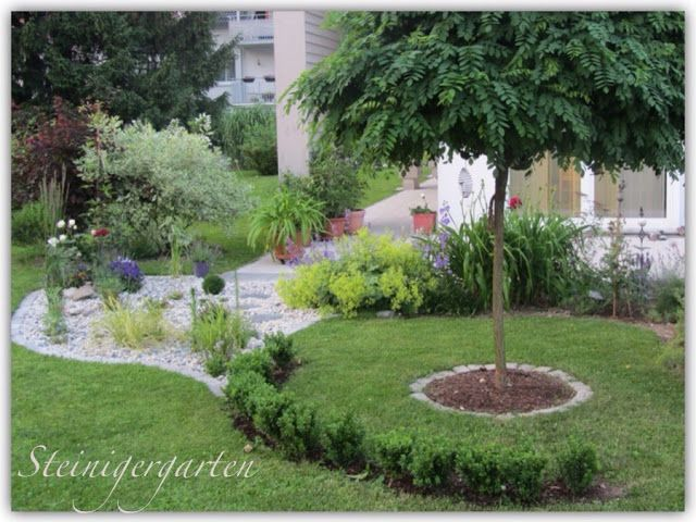 Steiniger Garten  Projekt Kiesbeet Garten Pinterest - kies garten gelb