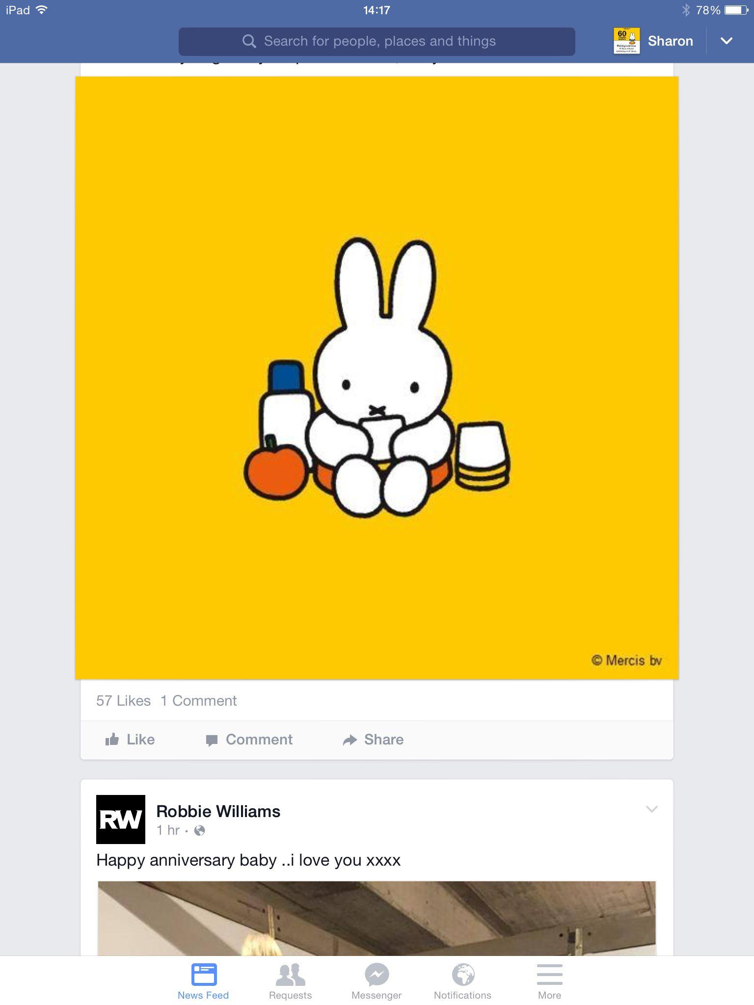 Miffys picnic childrens author dutch rabbit happy