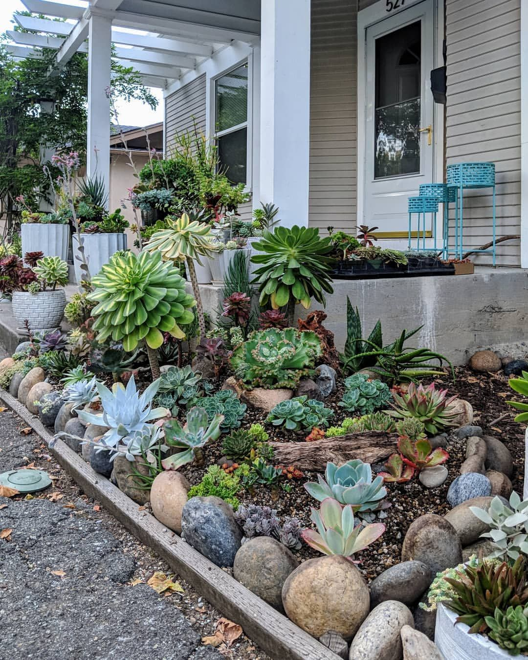 Image May Contain Plant And Outdoor Succulent Landscape Design Front Yard Landscaping Design Succulent Landscaping