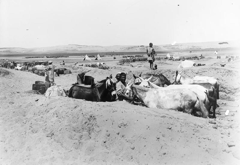 Mohammedan Transport Mule Drivers with their mules in pits to localize the effect of shell fire or bomb explosions. 7th (Indian) Division.