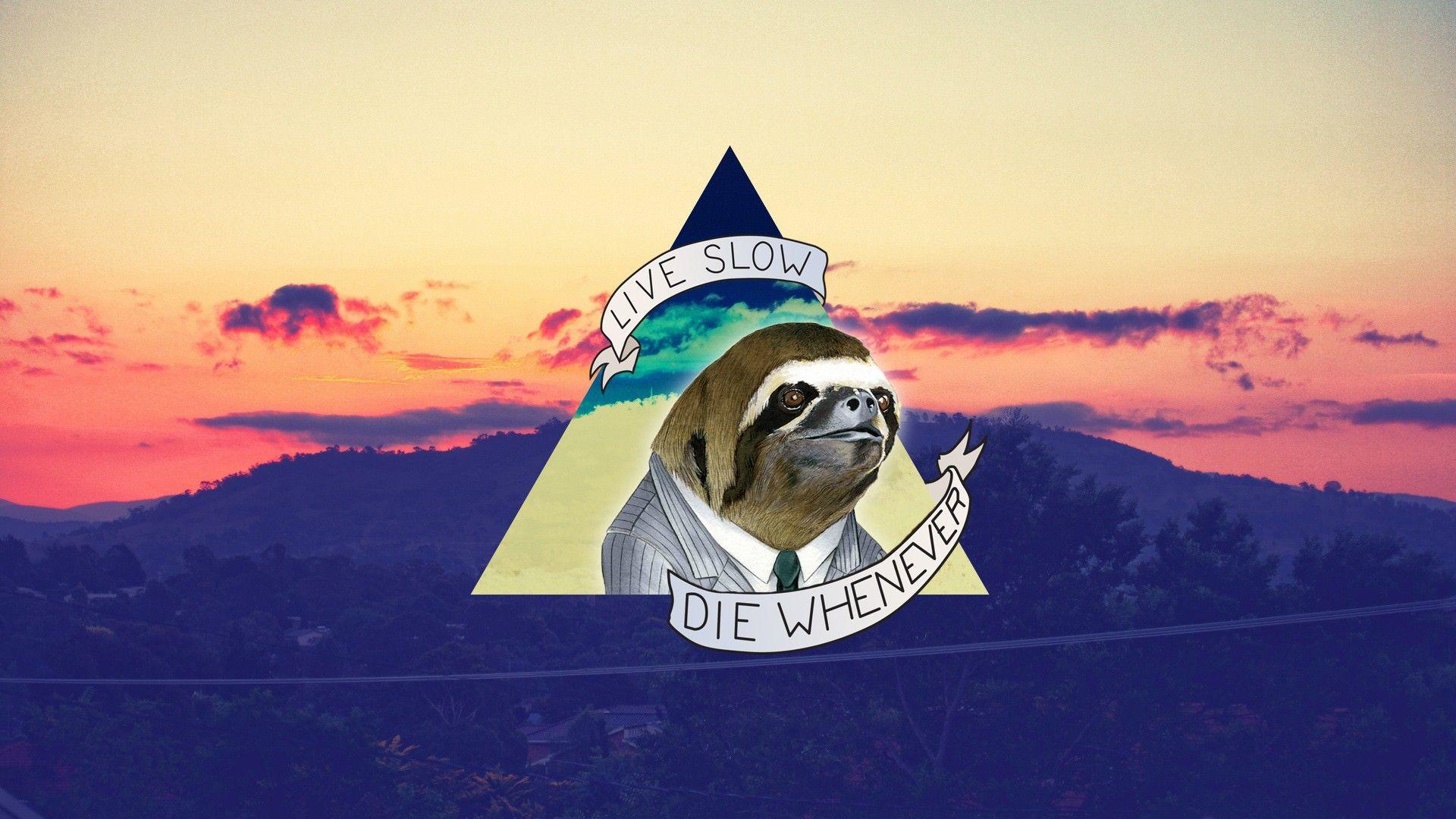 Sloth Desktop Wallpaper Hipster Wallpaper Sloth