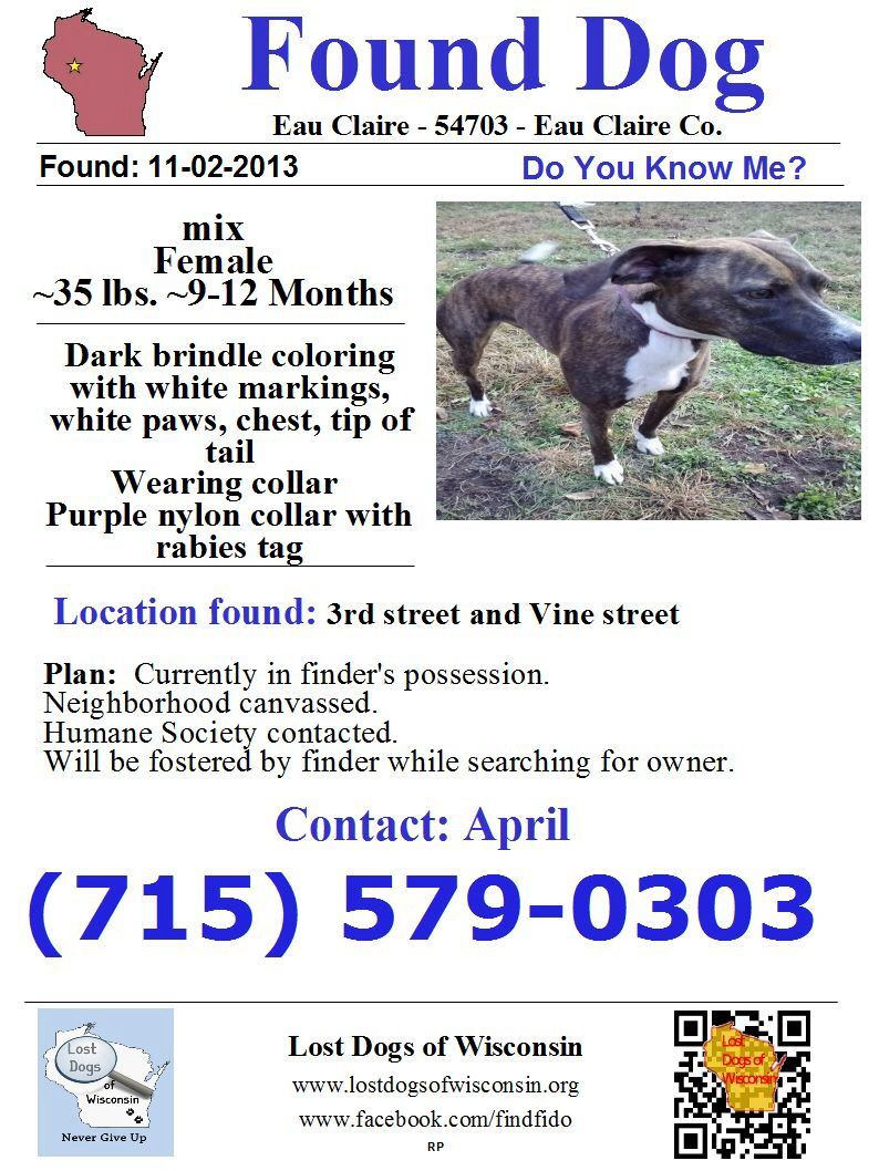 Pin By Us Lost Dog Registry On Wisconsin Us Lost Dog Registry