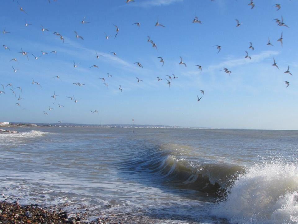 Stunning seascape