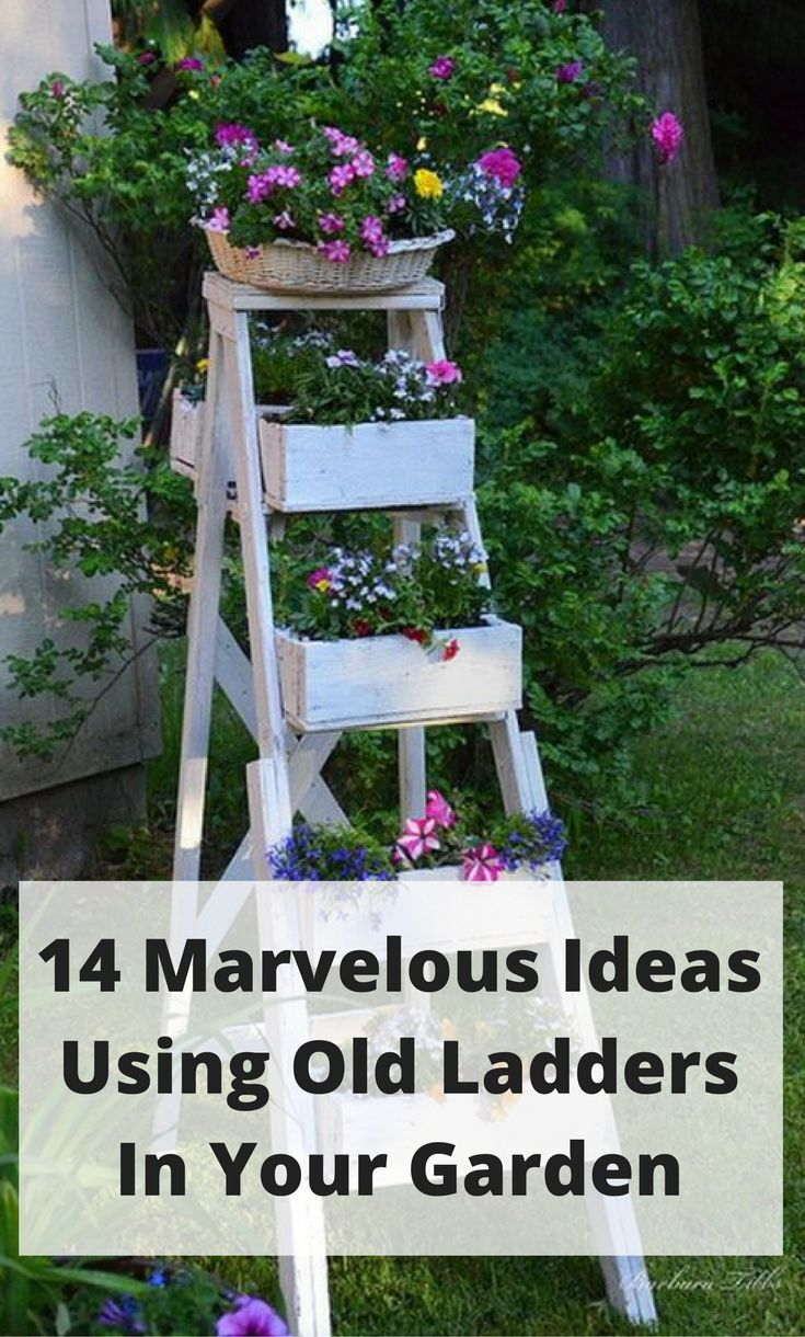 14 Marvelous Rustic Costal Home Decorating Ideas: 14 Marvelous Ideas For Using Old Ladder In Your Garden