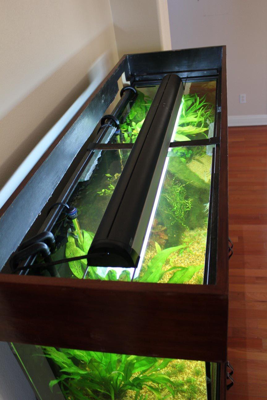 Diy Glass Aquarium Top Diy Glass Glass Aquarium All Glass Aquarium