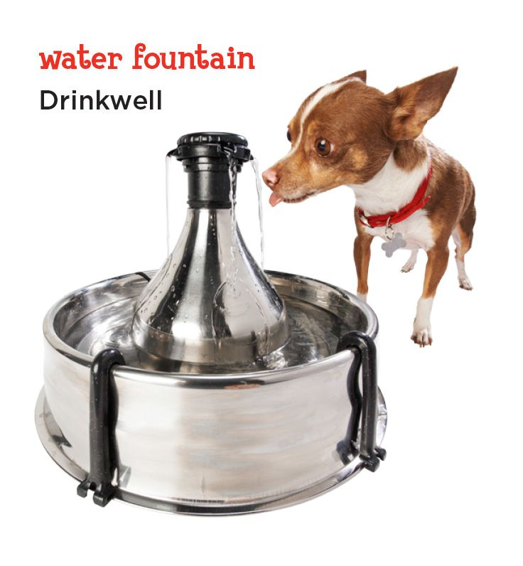 Petsafe Drinkwell 360 Stainless Steel Multi Pet Dog And Cat Water Fountain 128 Oz Petco Multi Pet Cat Water Fountain Puppy Items