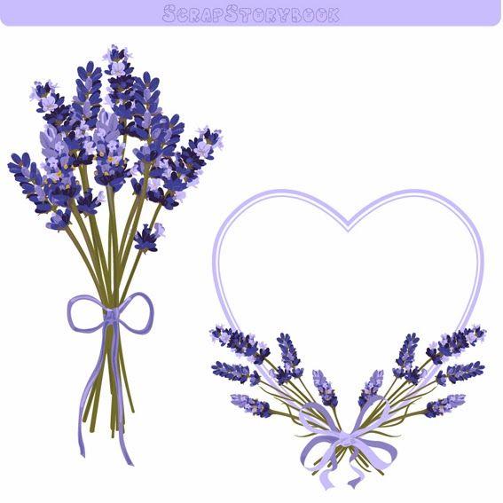 Lavender Clipart Lavender Clipart Flower Frame Jewelry Logo Design Clip Art