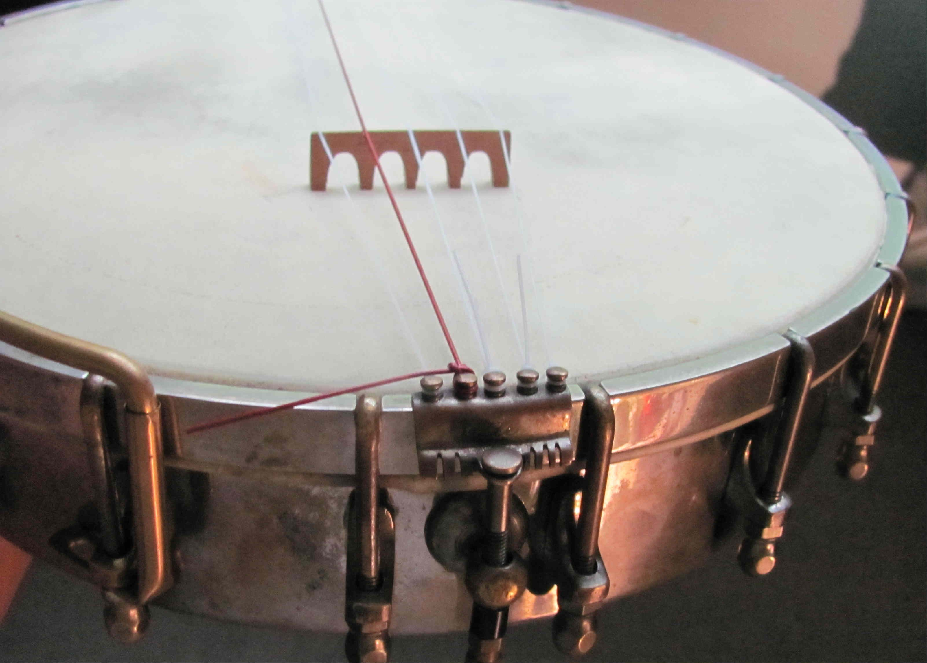 4634607282.jpg 3,204×2,292 pixels Banjo, Music instruments