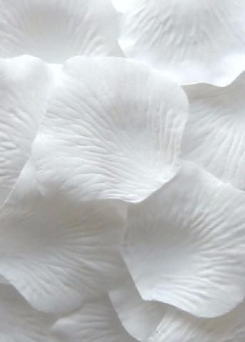 Loose Silk Rose Petals In White Perfect For Decorating Table Tops