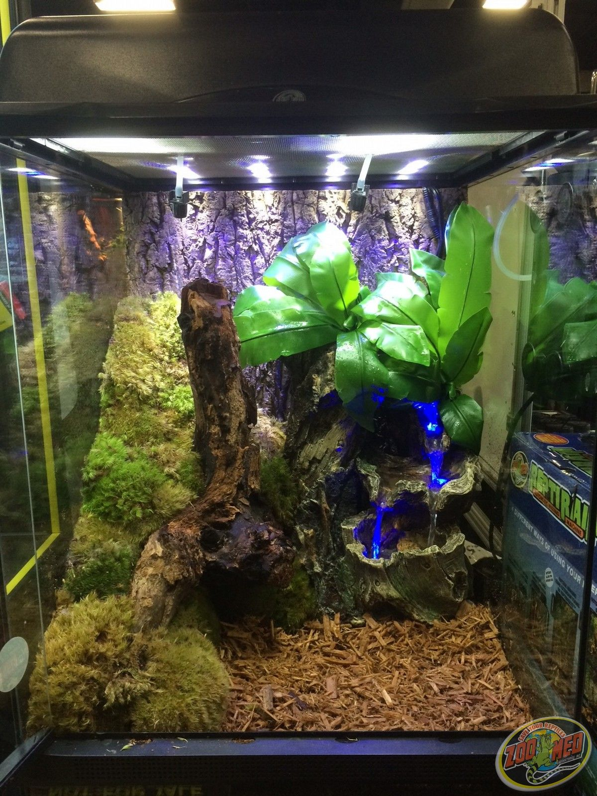Diy Terrarium For Reptile Making Of My Snake Cage Snake Cages