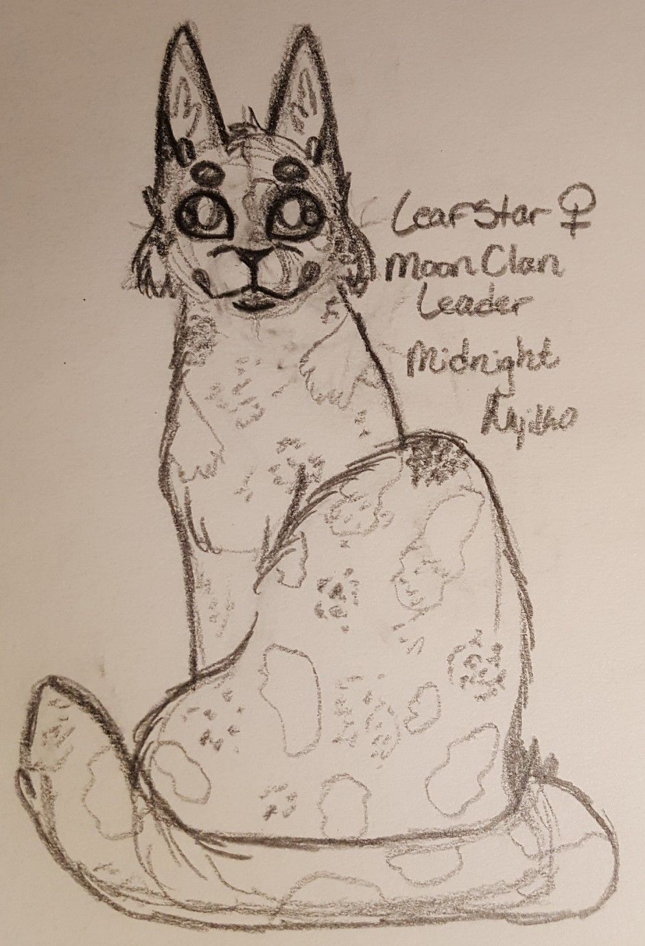 Pin By Midnight Nyiko On My Warrior Cat Drawings With Images