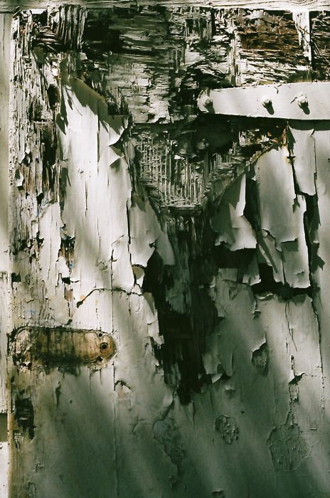 barn door, north county san diego. by amanda durbin ...