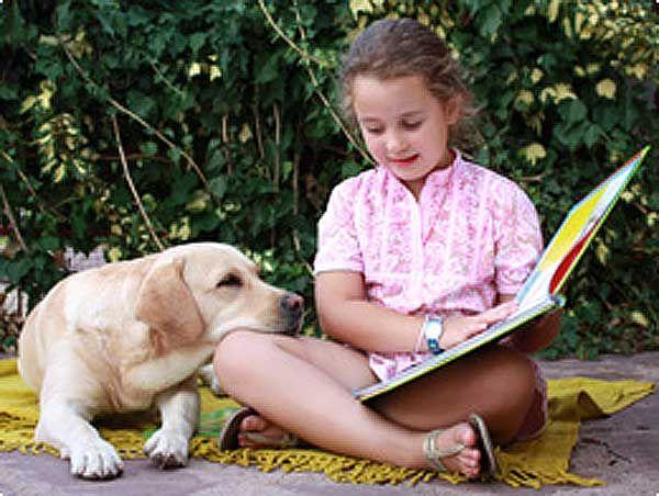 book pet - Pesquisa Google