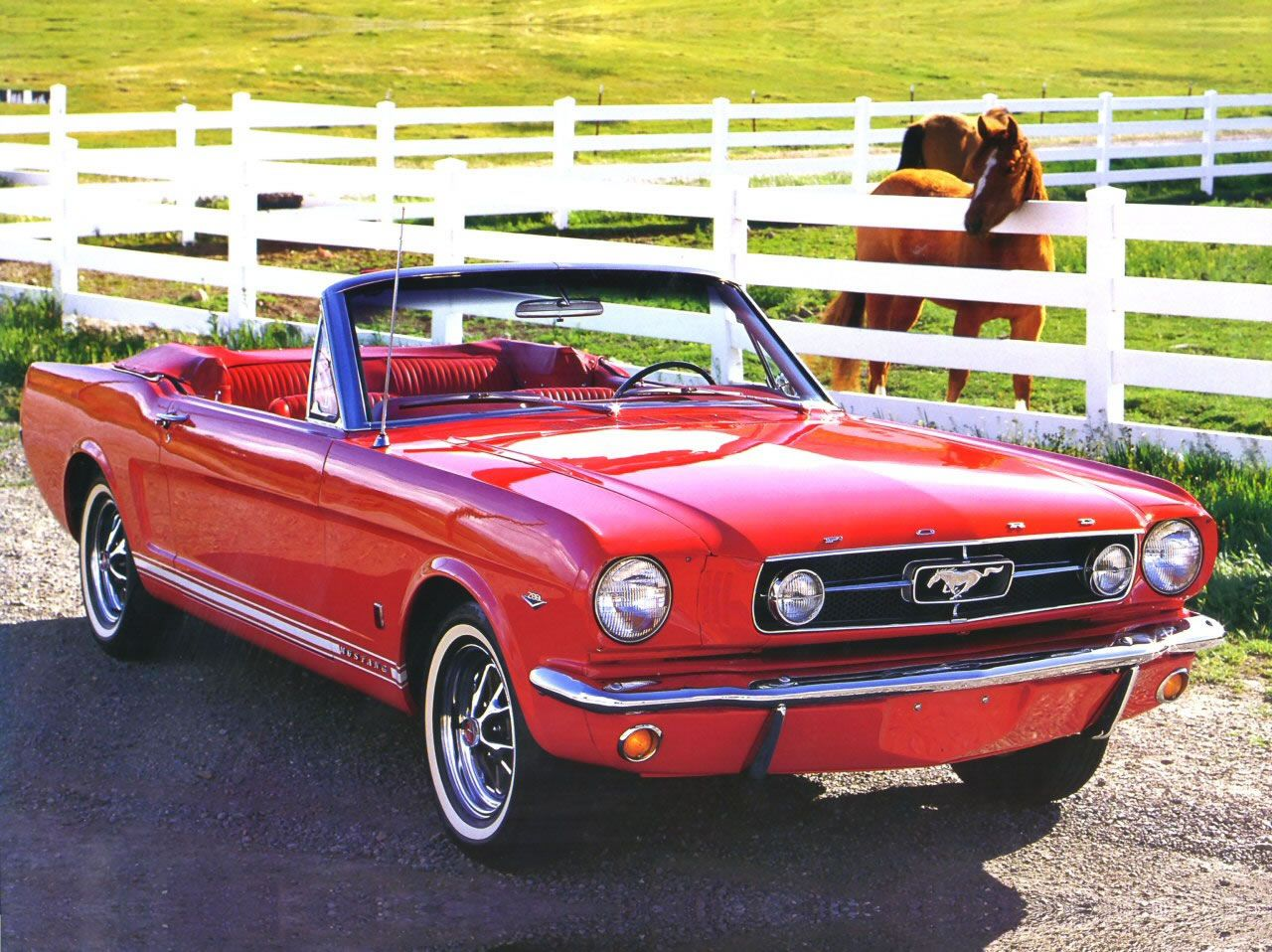 Red 1965 mustang convertable my dream car the real horse in the back isn t bad either