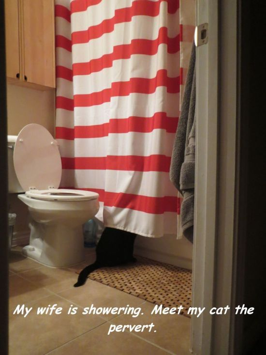 Likely... Peeping Tom Shower