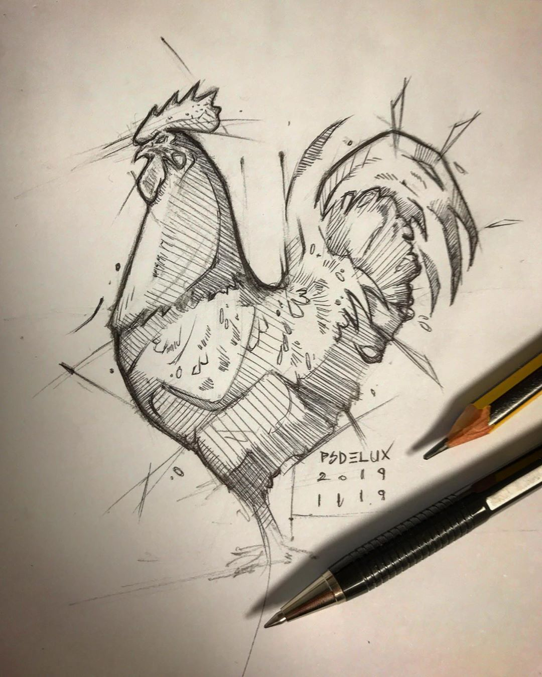 Sketch Rooster Pencil Ballpointpen With Images Sketches