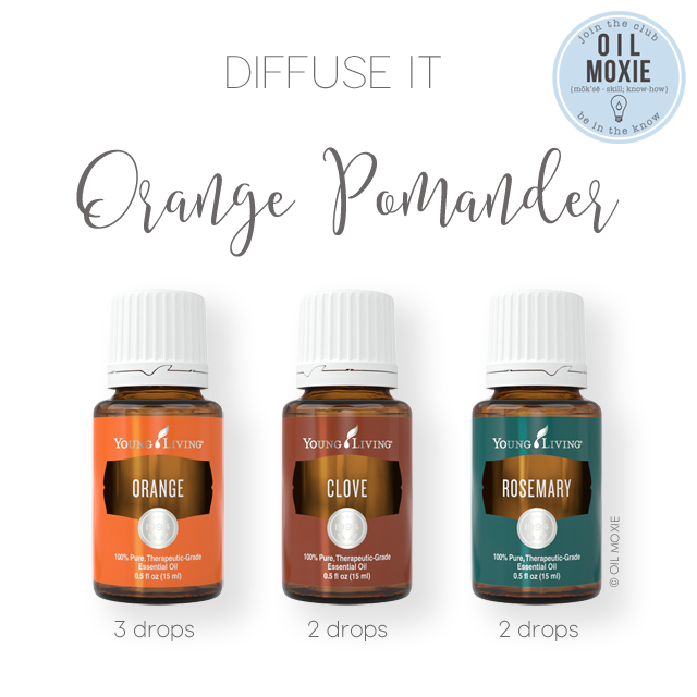 Orange Pomander Diffuser Recipe | Young Living Essential
