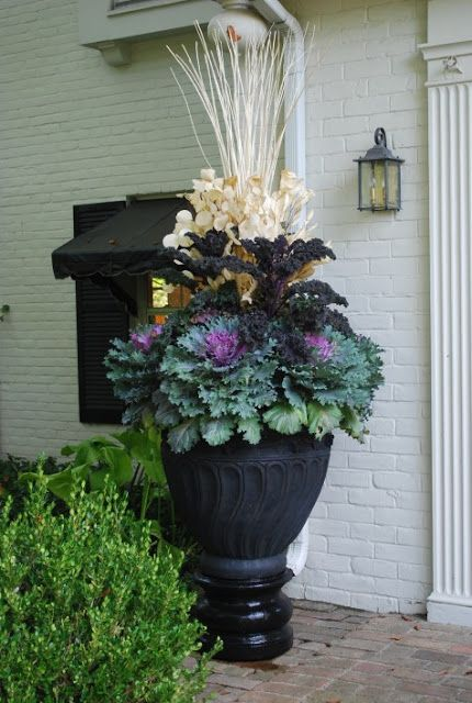 Kale as a base, add some dramatic color, and finish with dried plants and grasses. Easy!