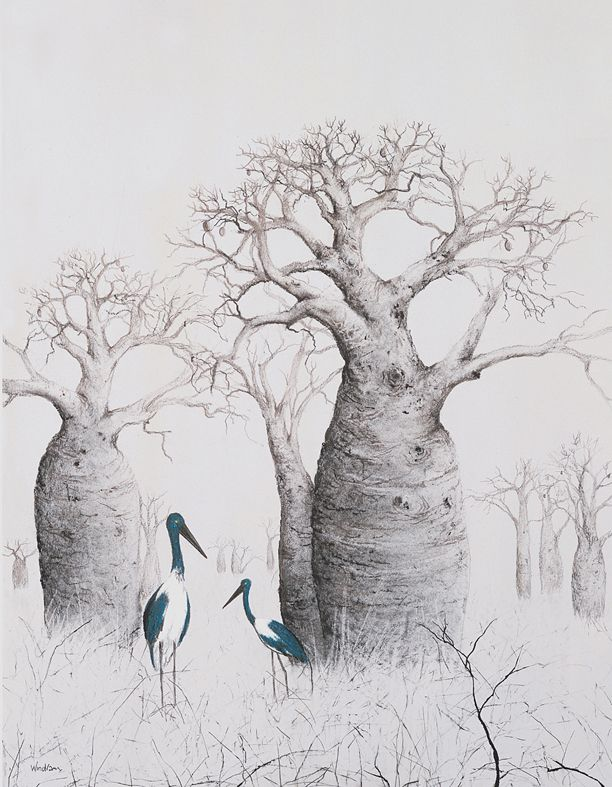 jabiru and boab trees art attack pinterest paintings artsy and drawings. Black Bedroom Furniture Sets. Home Design Ideas